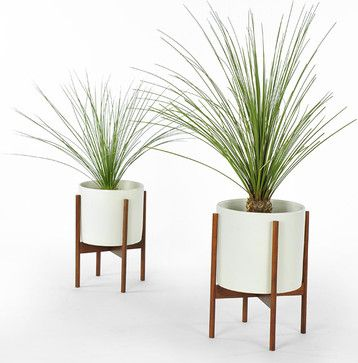 Case Study Cylinder Plant Pot With Stand, Small - contemporary - indoor pots and planters - Modernica