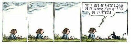 Llorar de Felicidad... pero no reir de tristeza.