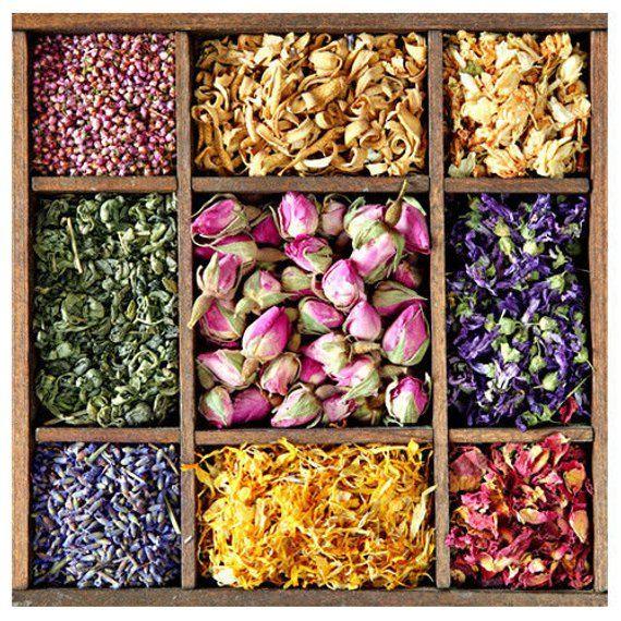 Fleurs Seches Petales 10g 50g Fleurs Sechees Etsy Flower Tea Organic Herbs Medicinal Tea