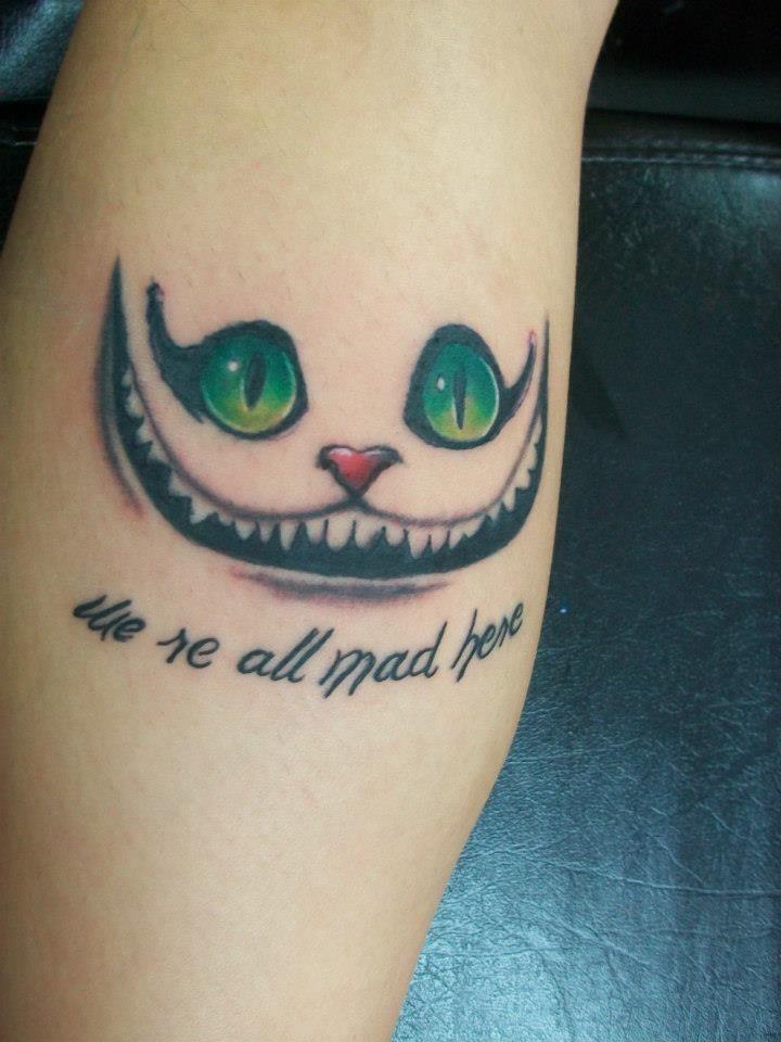 gato chester