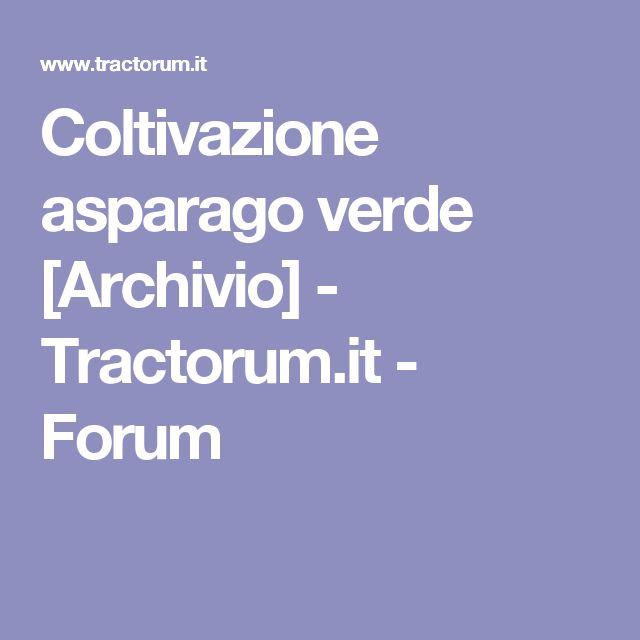 Coltivazione asparago verde [Archivio]  - Tractorum.it - Forum