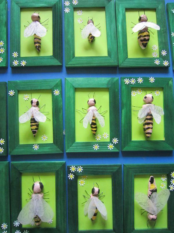 abeilles                                                       …