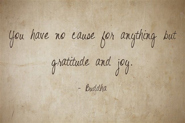 Gratitude Quotes: Best 25+ Quotes About Adversity Ideas On Pinterest