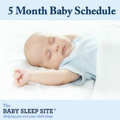 5 Month Old Baby Schedule