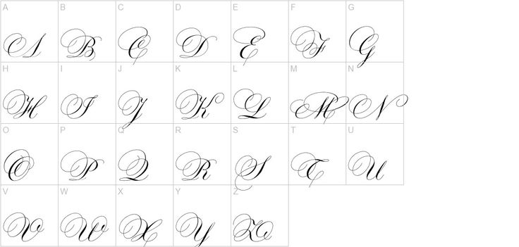 Calligraphy Pointed Pen Inspiration Exemplars A