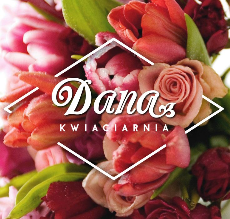 Update the brand of a local flower shop of my friend Ania Ziółek in Puławy (Poland). It needed to be more sutable for young clients  most of whom are women. Now flower shop also has facebook fanpage: https://www.facebook.com/Kwiaciarnia-DANA