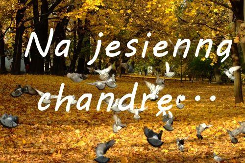Na jesienną chandrę… | Uwolnij swoje piękno