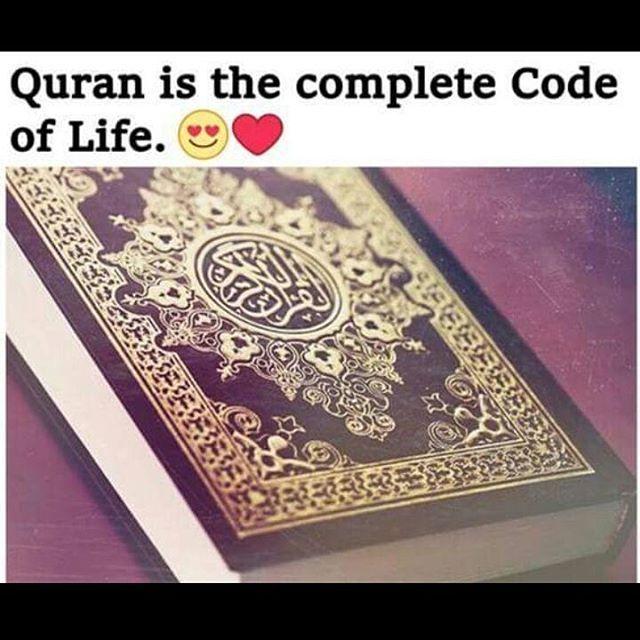 Pin by Sayyed Sayyed on Amazing ISLAM | Learn islam, Islamic quotes