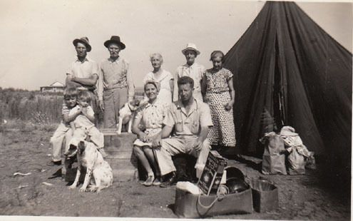 OLD photo Tent Eng Setter Beagle dog family box of Puffed Rice Fox terrier