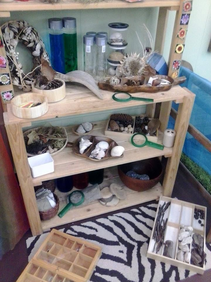 Nature Inquiry Space At Discovery Learning Centre