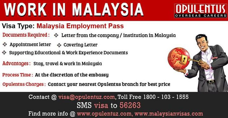 Malaysian government gives this visa to individual's specialized in particular technical or managerial skill. Initially the validity period for this visa is two years.