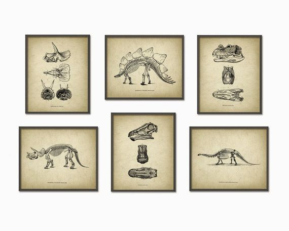 Dinosaur Print Set Of 6 Dinosaur Skeleton by QuantumPrints