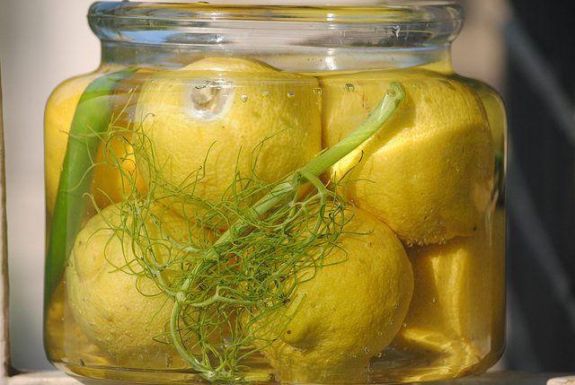 Соленые лимоны необходимый элемент Магрибской кухни, без которого просто невозможно передать всю ее красоту. И делают в Магрибе не соленые лимоны, а квашеные. Консервация этих плодов и развитие особого аромата происходит в результате молочнокислого брожения.