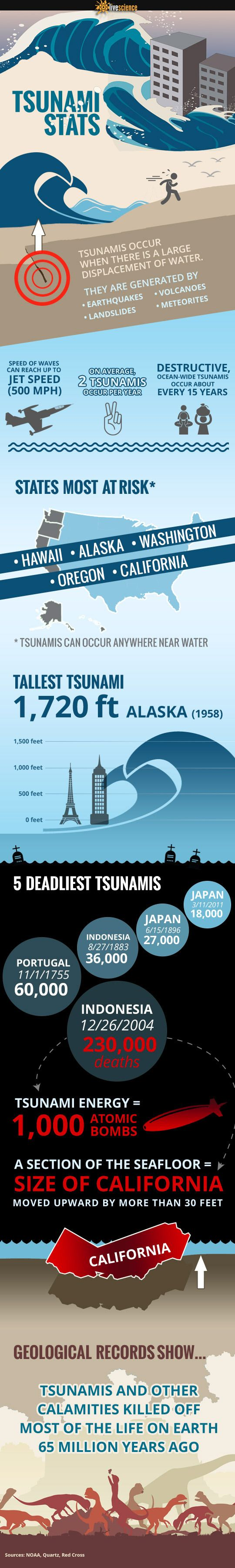 Tsunami Facts You Need to Know
