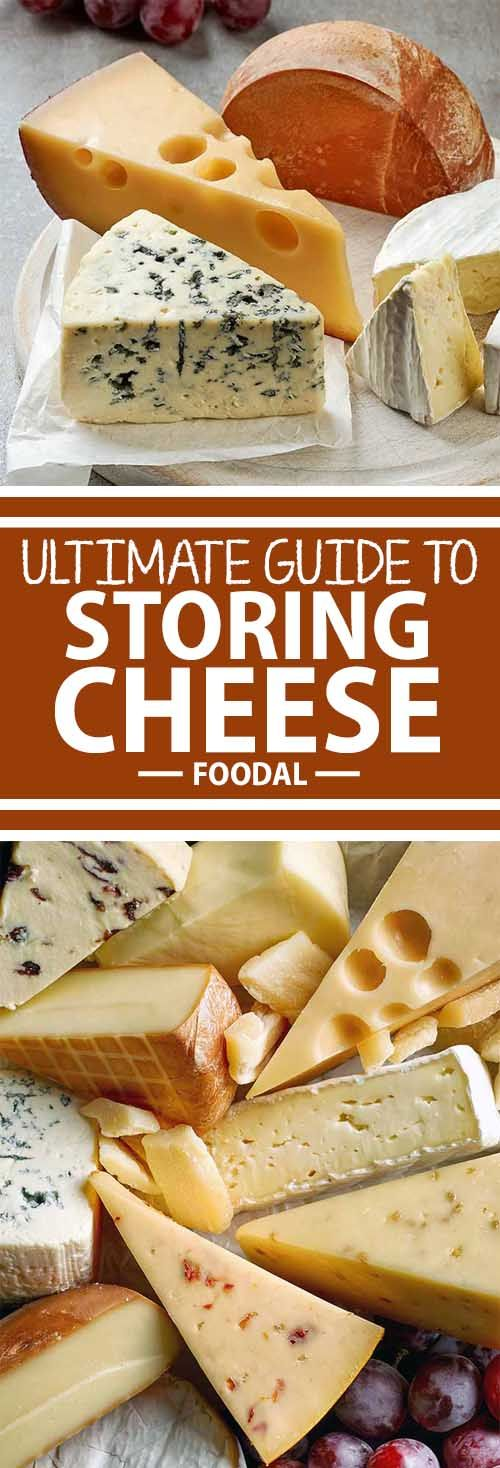 "Stocked up on fancy cheese and you want to make sure it stays tasty until the last bite? Not sure what the part of your fridge labeled ""Cheese Drawer"" is for? Never fear – Foodal has your comprehensive guide to wrapping and storing fine cheeses in your home refrigerator so they stay fresh until they're gone!"