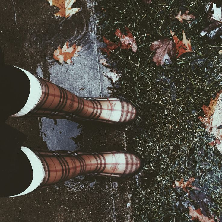 instagram: @ jillsahner