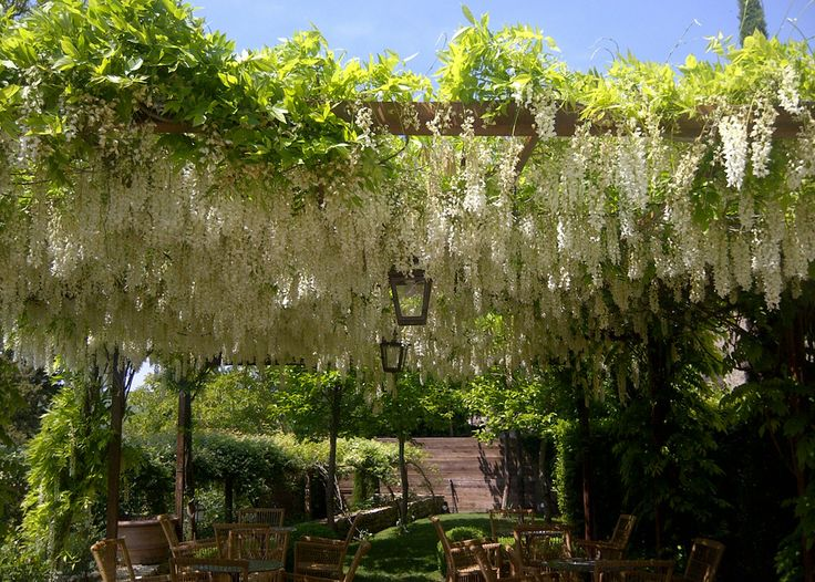 #wedding in #italy - Borgo to rent in exclsuive for your wedding. 5 indipendent #villas up to 30 people #bryllup #slott #bryllupfesten #bryllupitalia