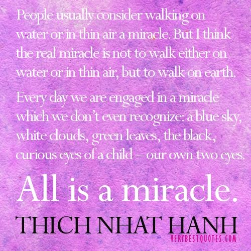 Every day we are engaged in a miracle which we don't even recognize.THICH NHAT HANH quotes miracle