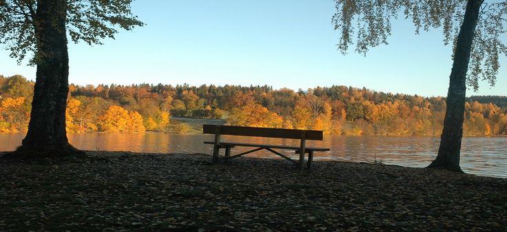 #Asker#SemGjestegård#SemLake#Norway#fall