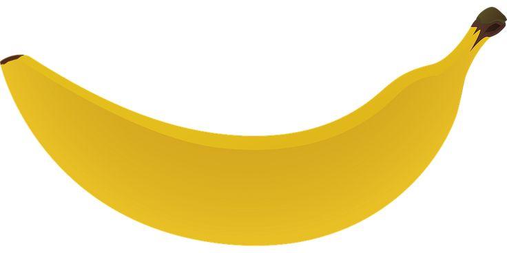 바나나 벡터 이미지입니다.   banana vector image
