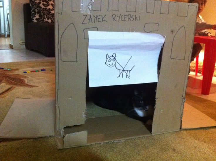 Cats not allowed in castle