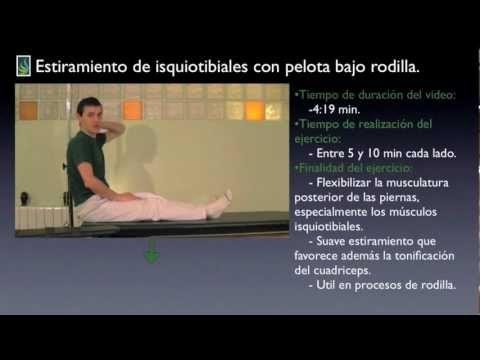 Recopilación de estiramientos de isquiotibiales.