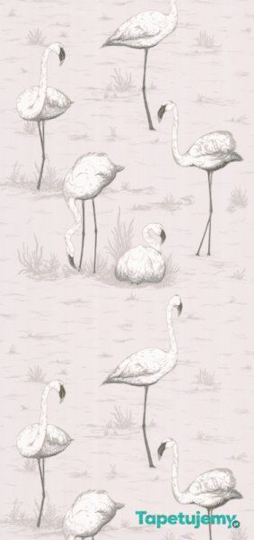 Tapeta Cole & Son - Contemporary Restyled  - Flamingos - 95/8046