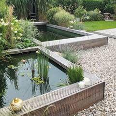 Gestaffelter Naturpool: minimalistischer Garten von qbus architektur  & innenarchitektur