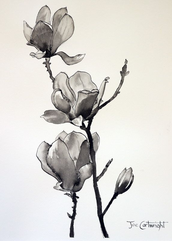 Pen And Ink Wash Drawings