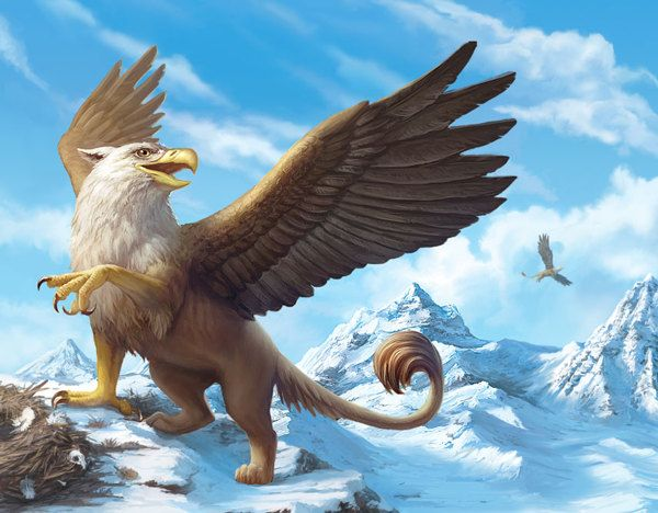 75 Best Griffins Images On Pinterest Monsters Mythical Creatures