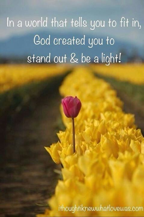 """""""You are the light of the world. A town built on a hill cannot be hidden. Matthew 5:14"""