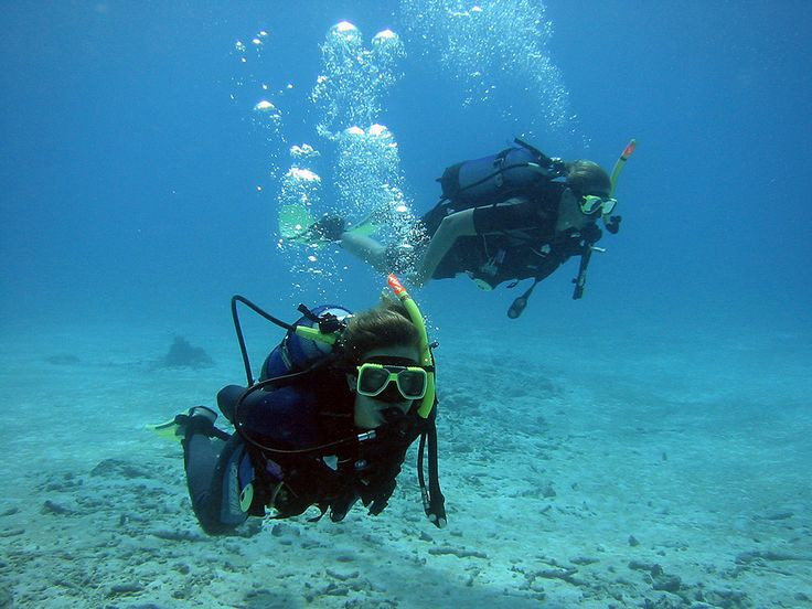 Tauchen Tauchreisen Karibik Karibikreisen - Karibiksport