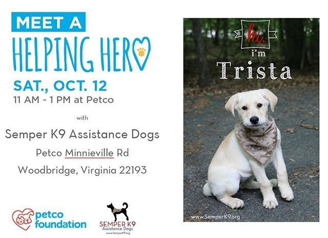 Join Semper K9 This Saturday For Petco Foundation S Helping Heroes
