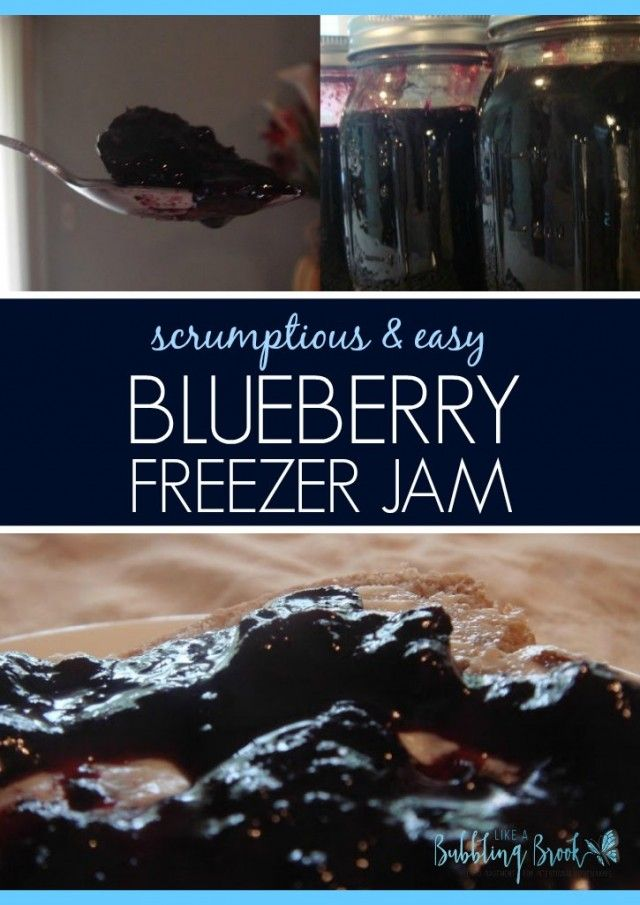 A low sugar, simple recipe for blueberry freezer jam, no added pectin necessary.  Delicious!