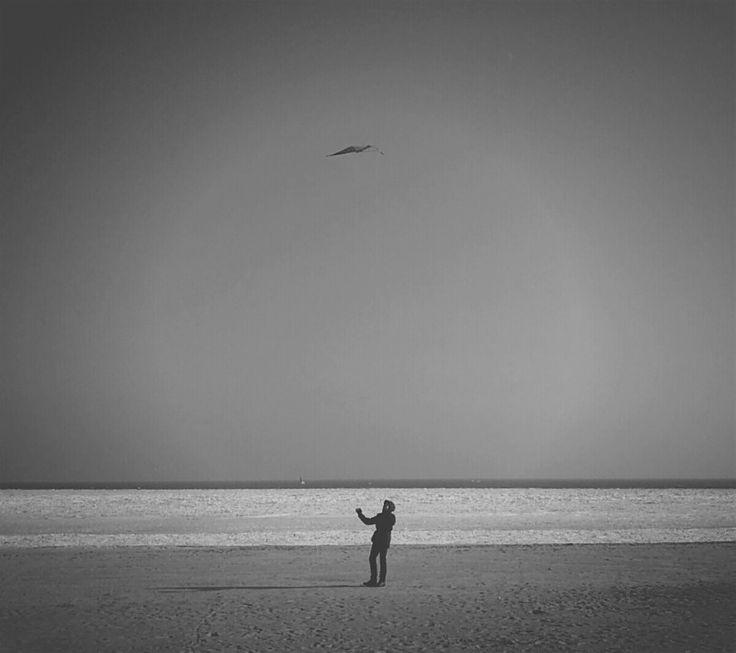 Photo Of The Week (57) Zaklinacz latawców ( Alternatywnie ) - Gdynia Plaża Miejska