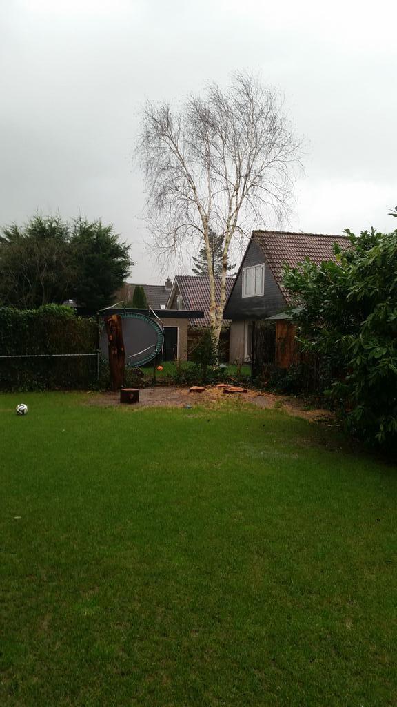 Daag Trampoline. Veel plezier bij de buren.....omg  #storm