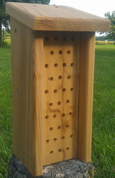 49 Best Bee Houses Images On Pinterest