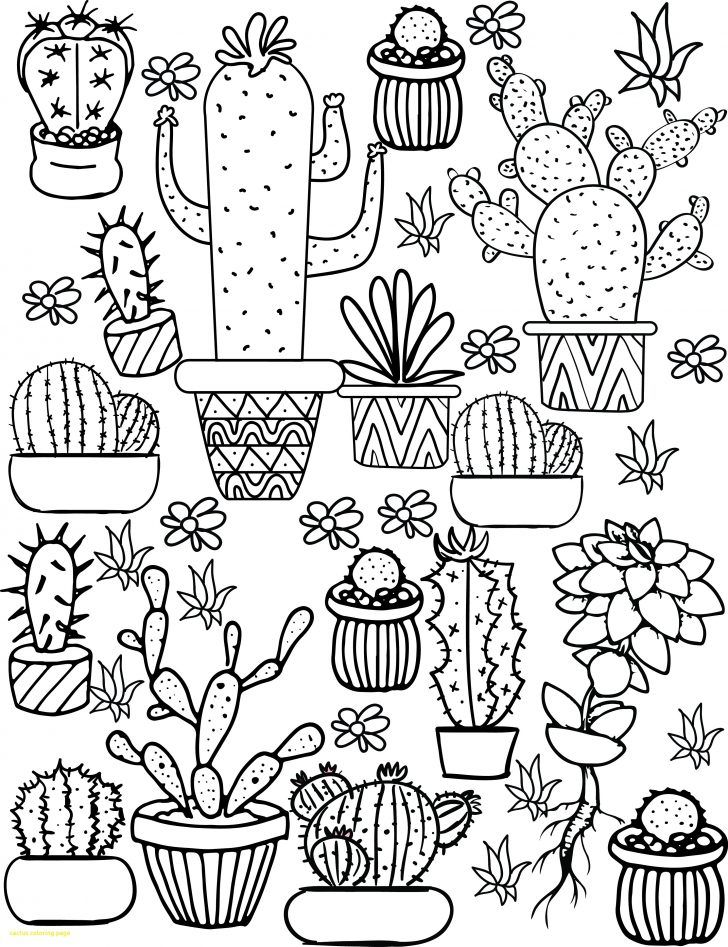 Cactus Coloring Page with Cactus Coloring Sheet 4100