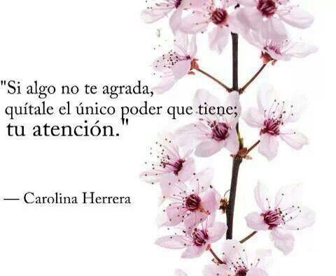 Enfocarse en lo que disgusta, no agrada, molesta, es justamente, como dice Carolina Herrera, darle el poder para que invada perspectivas, aparezca constantemente y tiña lo que se hace. Cualquier ob...