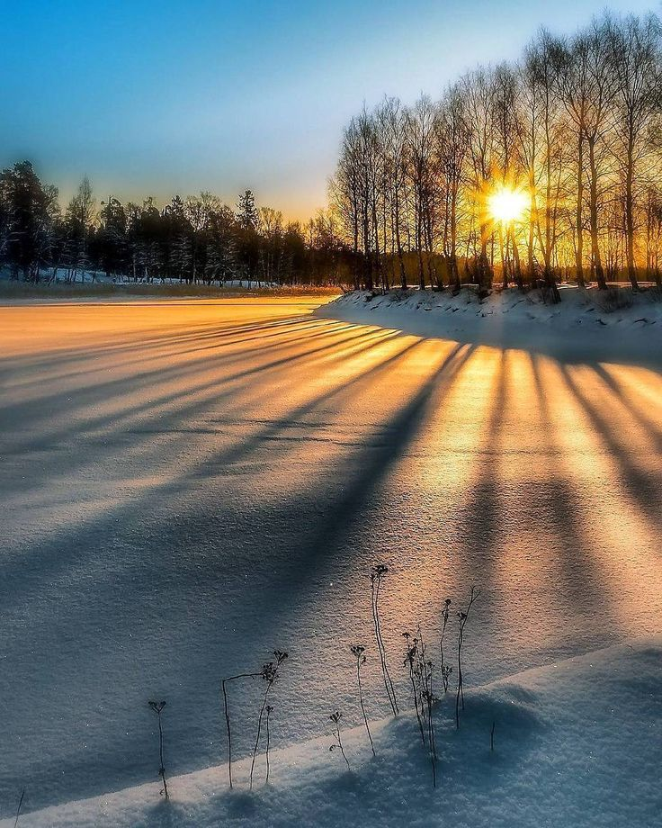 Early morning pure @nature ~ Vaasa, Finland. Photo by @pekka.ahkynen #nature