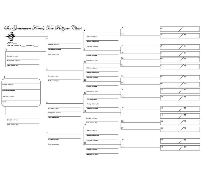 Best 25+ Family tree template word ideas on Pinterest Family - family tree template