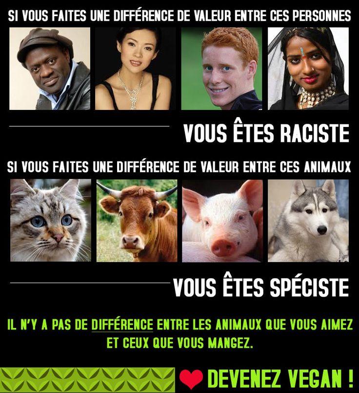 Images Vegan | VEGAN FRANCE | Portail Vegan / Végétarien / Végétalien