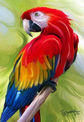 Perched Parrot Painting at ArtistRising.com