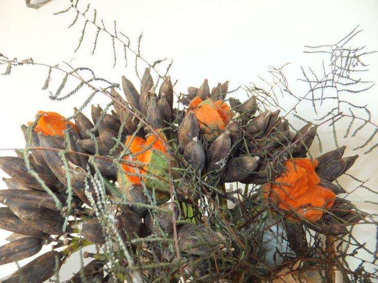 agave zaden. met vilten tulpen.