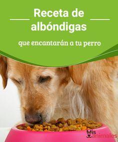 Receta de albóndigas que encantarán a tu perro  En el momento de elegir la comida para nuestras mascotas, cada vez más se impone la alimentación natural. ¿Probarás esta receta de albóndigas? #recetas #natural #comidas #alimentación