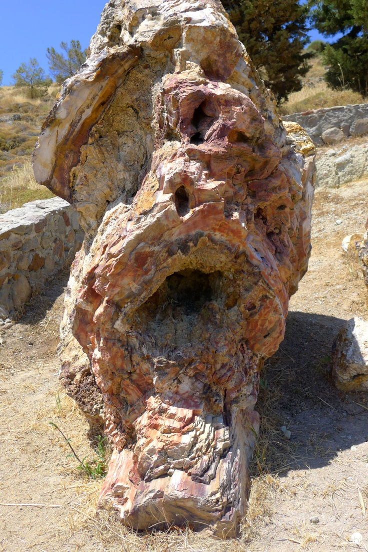 Petrified Forest in Lesbos Greece Inspiredbytraveling.com