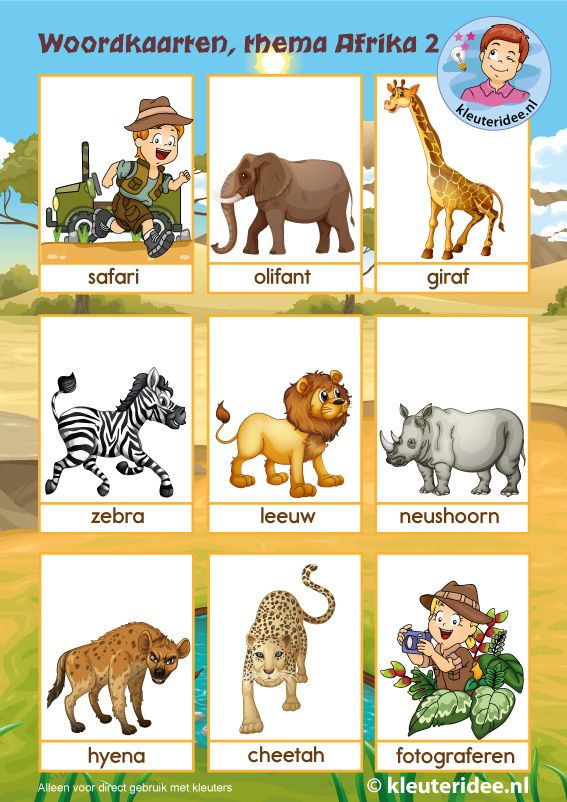 Woordkaarten 2, thema Afrika, kleuteridee, free printable.
