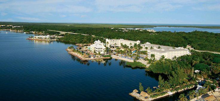 Key Largo Resorts   Key Largo Bay Marriott Beach Resort been here and luv it