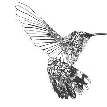 Hummingbird by art-tonic ...
