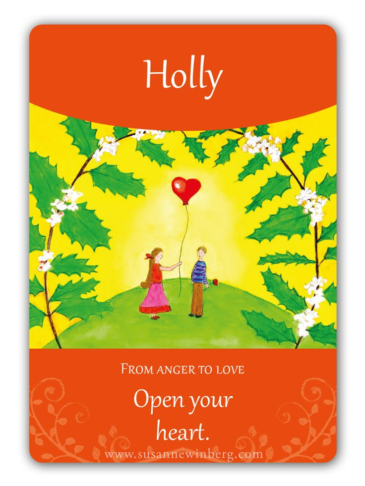 Holly - Bach Flower Oracle Card by Susanne Winberg. Message: Open your heart.